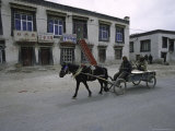 A Carriage, Tibet Prints by Michael Brown