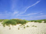 Beach and Dunes with Marram Grass, Dorset, UK Photographic Print by Ian West