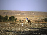 Camels Walking with a Man, Morocco Photographic Print by Michael Brown