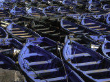 Blue Boats, Morocco Photographic Print by Michael Brown