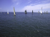 Sailboats in Ocean, Ticonderoga Race Print by Michael Brown