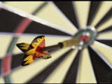 Dart on the Bull's-Eye of a Dart Board Photographic Print