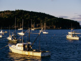 Boats in a Harbor Photographic Print