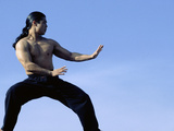 Martial Arts Posture Photographic Print