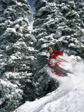Skier in Red with Trees Photographic Print