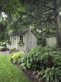 Lush Landscaping with Garden Shed Photographic Print