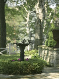 Birdbath and Planter Photographic Print