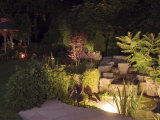 Garden Pond Lit Up at Night Photographic Print