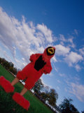 Low Angle View of a Person Dressed in a Bird Costume As a Mascot Photographic Print
