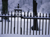 Metal Fence in a Snow Covered Landscape Photographic Print