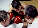 Boxer Receiving Advice Photographic Print
