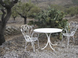 Table and Chairs Beside a Cactus Plant on a Hillside Photographic Print