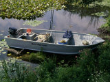 A Dog in a Boat on a Pond Photographic Print