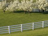 Lexington, Kentucky, USA Photographic Print