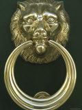 Lion's Head Doorknocker Photographic Print
