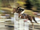 Fast Moving Show Jumper Photographic Print