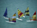 Five Windsurfers Photographic Print