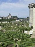 Chateau de Villandry and Gardens, France Photographic Print