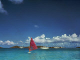 Windsurfing in the Caribbean Photographic Print
