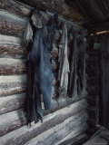 Miners' Apparel, Garnet Ghost Town, Montana, USA Photographic Print