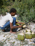 Cutting Coconuts, Barbuda Photographic Print