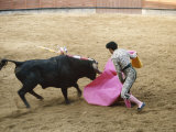 Bullfighting, Plaza de Toros, Ronda, Andalusia, Spain Photographic Print