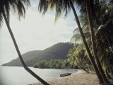 Prince Rupert Bay, Dominica Photographic Print