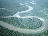 Aerial View of Amazon River and Jungle, Brazil Lámina fotográfica