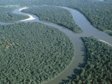 Aerial View of Amazon River and Jungle, Brazil Photographic Print