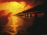 Florida, USA Photographic Print