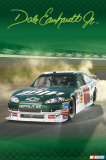 Dale Earnhardt Jr. Amp Prints