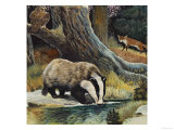 Badger, Fox, Owl and Mouse Giclée-tryk