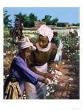 Cotton Pickers, 2003 Giclee Print by Colin Bootman