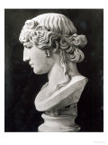 Bust of Antinous Giclee Print by  Roman