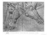 Heads of Horses Giclee Print by Antonio Pisani Pisanello