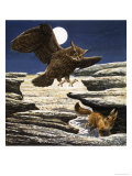The Fennec Fox and Eagle Owl Giclee Print by Eric Tansley