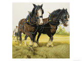 Farm Horses Giclee Print by David Nockels