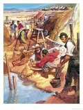 The Story of Australia: Gold Giclee Print by Barrie Linklater
