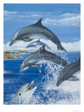 Dolphins Giclee Print by Janet Blakeley