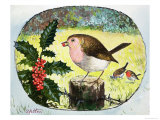 Robin Giclee Print by Clive Uptton