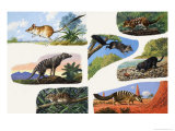 Pouched Animals of Australia Giclee Print by Leslie Field Marchant