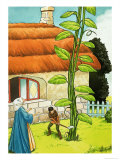Jack and the Beanstalk Giclee Print by Nadir Quinto