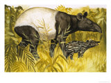 Peeps at Nature: The Tapir Giclee Print by Arthur Oxenham