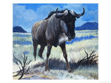 Gnu Giclee Print by G. W Backhouse