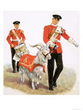 Army Mascot Goat Giclee Print by Clive Uptton