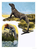 Komodo Monitor and Sea Iguana Giclee Print by Eric Tansley