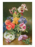 Roses, Poppy and Pelargonia Giclee Print by James Holland