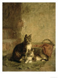 Cats, 1883 Giclee Print by Julius Adam