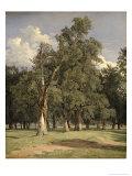Elm Trees in Prater, 1831 Giclee Print by Ferdinand Georg Waldmuller
