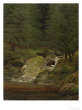 The Evergreens by the Waterfall Giclee Print by Caspar David Friedrich